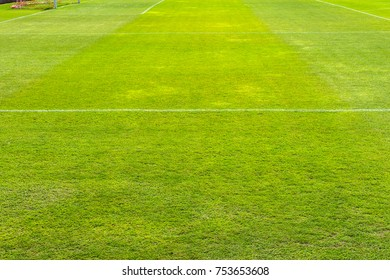 Green grass in soccer stadium. soccer field grass with stadium on blue sky background. focus to grass.