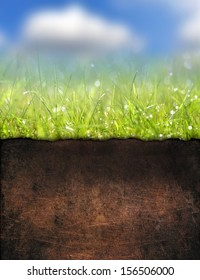 Green grass with soil texture