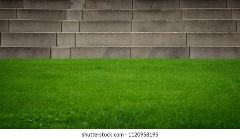 Green grass and stone steps. Background with space for text.