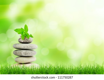 Green grass with stones, natural background with selective focus. spa concept