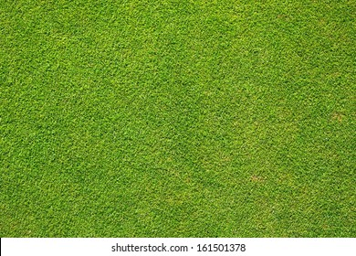 Green grass texture background golf course