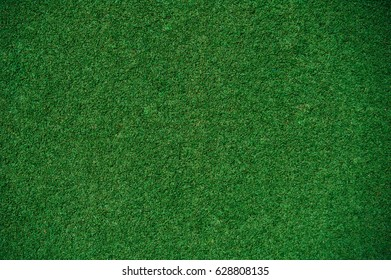 Green grass  texture background. Stadium grass background.
