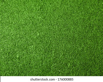 Green grass texture background. Top view photo