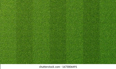 Green grass texture for sport background. Detailed pattern of green soccer field or football field grass lawn texture. Green lawn texture background. Close-up.