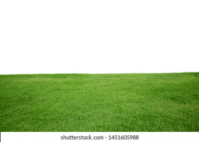 Green Grass Texture with White Blank Copyspace