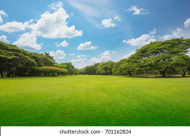 Green grass green trees in beautiful park white Clouds and blue sky in noon. Beautiful park scene in public park with green grass field, green tree plant and a party cloudy blue sky.
