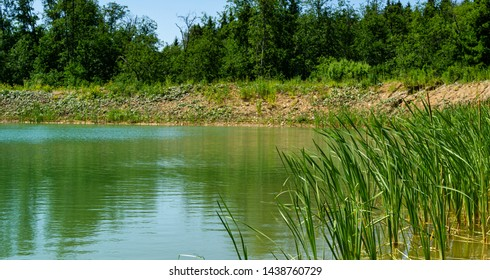 Green grass Typha angustifolia in focus front panorama of quarry lake with emerald water and wild forest as background. Theme for traveling and tourism