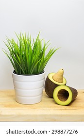 green grass in white pot with Avocado