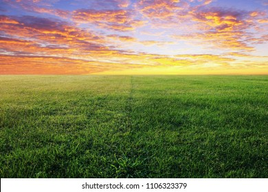 green grassland and beautiful sky in the morning sunrise