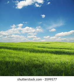 green grassland and white clouds