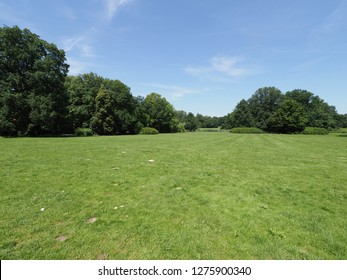 Green grassy field and trees at park landscapes in european Pszczyna city in Poland with clear blue sky in 2018 warm sunny spring day on June.