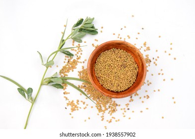 the green greek plant with greek grain in the wooden bowl isolated on white background.