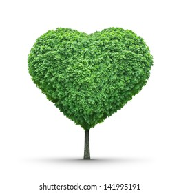 Green heart-shaped tree isolated on white