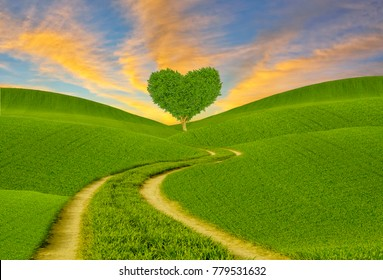 green heart-shaped tree on a spring meadow
