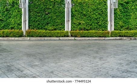 Green hedge fence with concrete pole