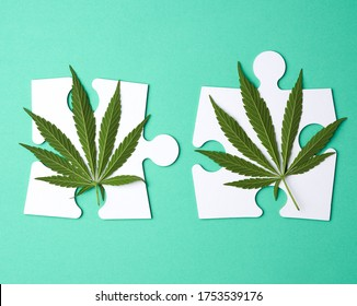 green hemp leaves and big white paper puzzles on a green background, top view, flat lay