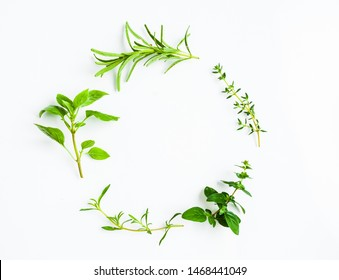 Green herb twigs in a circle isolated on white. Concept of fresh condiments for food, top view with copy cpace