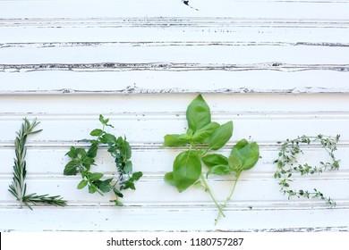 green herbs table