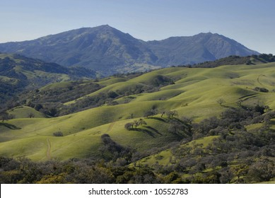 Green hills of California in early spring with Mt. Diablo behind.
