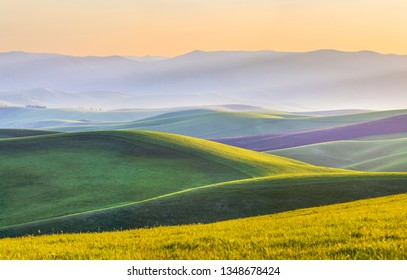 Green hills, meadows and mountain slopes in the evening light. Spring rural landscape.