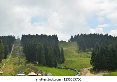 Green hills with ski track between pines and firs in summer