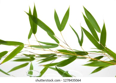 green horizontal leaves and branches of bambu reflected in mirror and water drops on white background