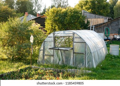 Green house located ina small, but beautiful home garden in a summer day.