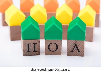 Green House Model Over Homeowner Association Wooden Blocks