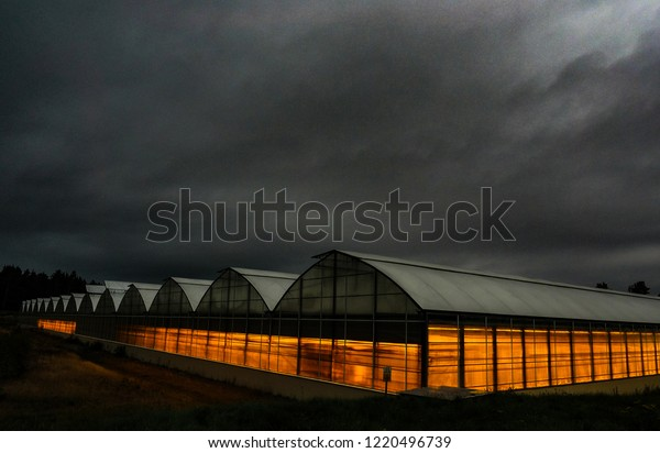 Green house under mystical clouds at dawn