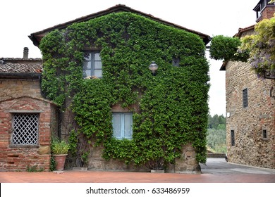 A green house in Vinci, Touscany
