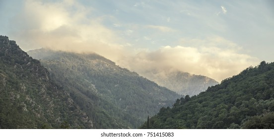 Green idyllic mountain landscape at sunset with warm yellow light in Corsica