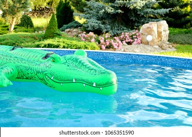 Green inflatable crocodile in the pool