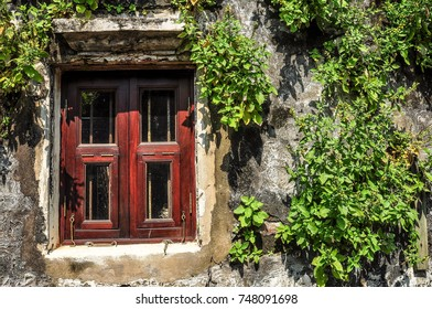 green ivy grows on old-fashioned classic walls and has red windows in thailand.  morning light makes beautiful shine on vintage wall..space put your text and selective focus.