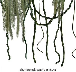 Green jungle vines on a white background