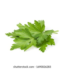 green kenza leaves on a white background