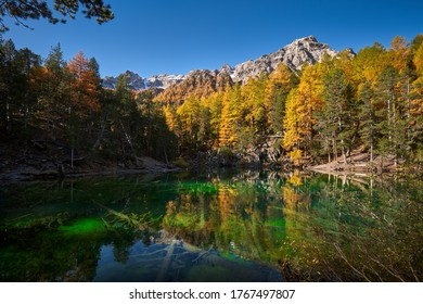 Green Lake (Lac Vert) in the Narrow Valley (Vallee Etroite) in Autumn. The intense green color is due to the presence of algaes. European Alps