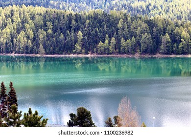 Green Lake Surrounded by Forest