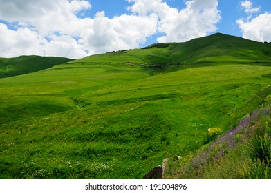 Green landscape with cloudy blue sky