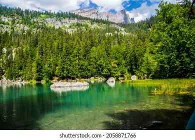 A green landscape of Lac Vert lake in Chamonix in Haute Savoie in France