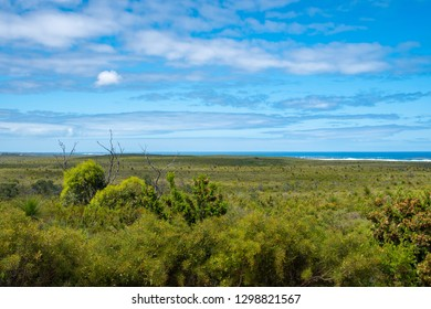 Green landscape at Nilgen Nature Reserve in West Australia