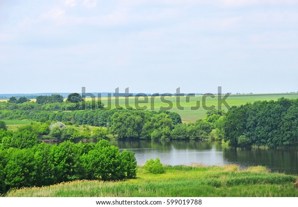 Green landscape with river, tree and field