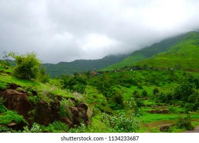 Green landscape surrounded by hills in monsoon season