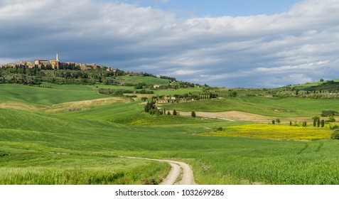 Green landscape with town Pienza in the background, Tuscany, Italy. typical landscape with green fields, cypresses and old town