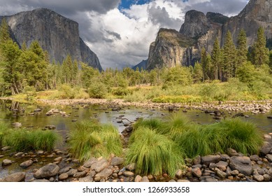 Green landscape in the valley of Yosemite National Park
