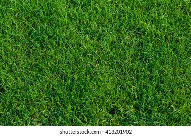 Artificial Grass Lawns and Putting Greens | Celebrity Greens