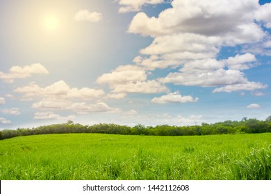 Green landscape,mountain and bright sky.