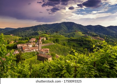 Green landscapes on the Prosecco hills