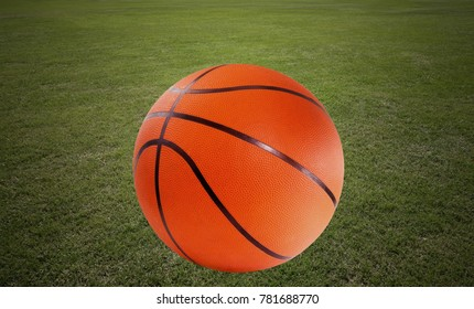 Green lawn with basketball, horizontal.
