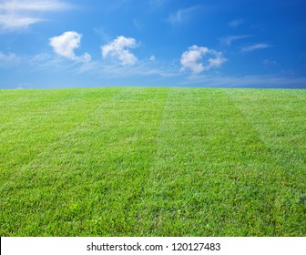 Green lawn with blue sky. Green lawn background. Nature landscape background. Green grass texture. Spring landscape in sunny day.