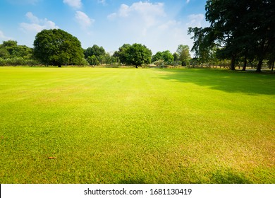 Green lawn and blue sky in the park.